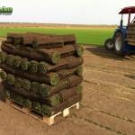 03-grassfarm